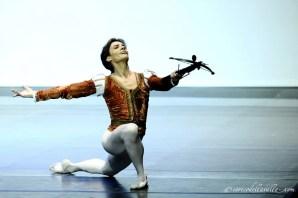 Black Swan Giuseppe Picone