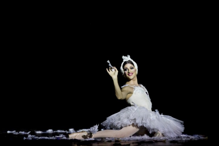 Carlos Renedo's Dying Swan
