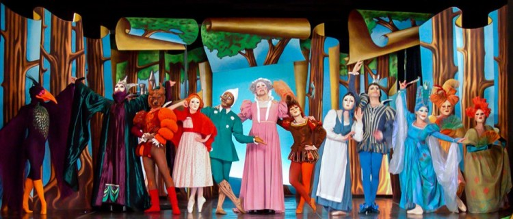 Costumes created for Arcadia Productions' show Storybook