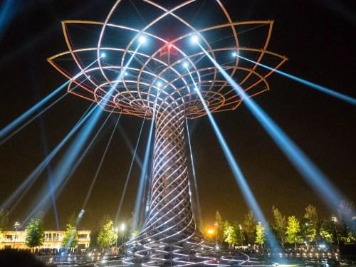The Tree of Life, Albero della Vita, 2016