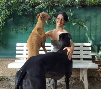 Monica Vaglietti with two Greyhounds