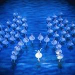 Derek Deane on 20 years of his Swan Lake 'in the round'