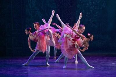 English National Ballet's Nutcracker, photos by Dasa Wharton 12