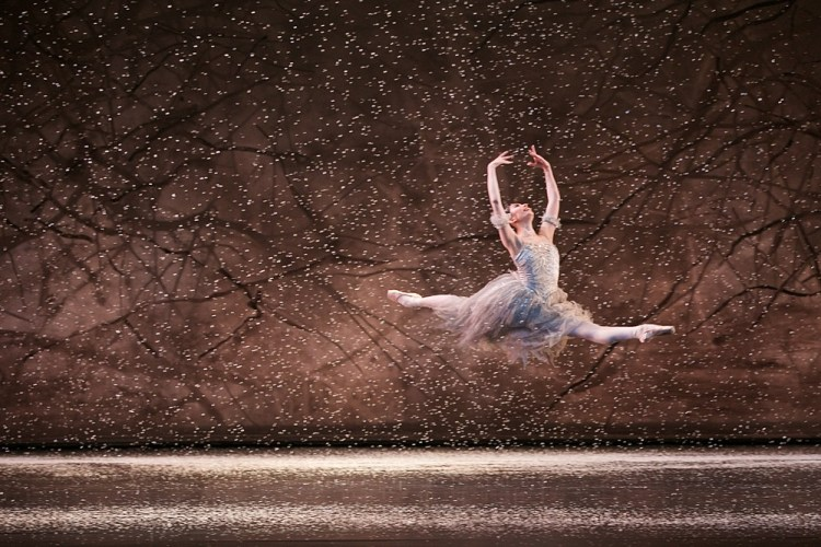 The Nutcracker, Birmingham Royal Ballet, photos by Dasa Wharton 05