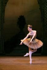 The Sleeping Beauty, English National Ballet, © Dasa Wharton 2018 09