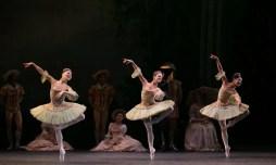 The Sleeping Beauty, English National Ballet, © Dasa Wharton 2018 21