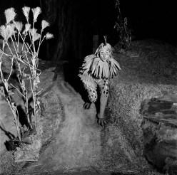 Luisa-Mandelli-in-The-Cunning-Little-Vixen,-1958