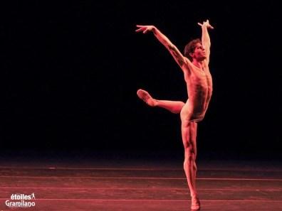 Sergio Bernal, Swan, photo by Graham Spicer 01