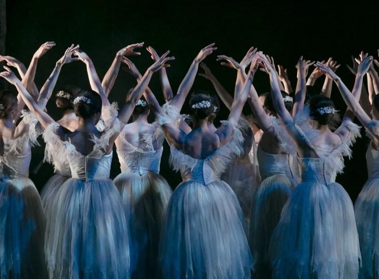 03 Giselle, Birmigham Royal Ballet © Dasa Wharton 2019