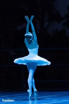 Iana Salenko as The Dying Swan © Graham Spicer 03