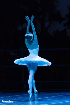 Iana Salenko as The Dying Swan © Graham Spicer 03