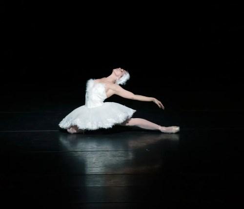 Dying Swan, Natalia Osipova, Royal Ballet Live, photo by Emma Kauldhar ROH 2020