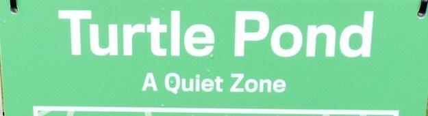 Noisy turtles, beware.