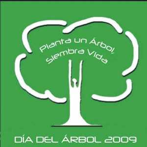 Camiseta 2009 que se entrega plantando un arbol