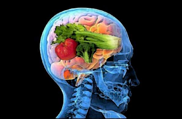 cerebro comida