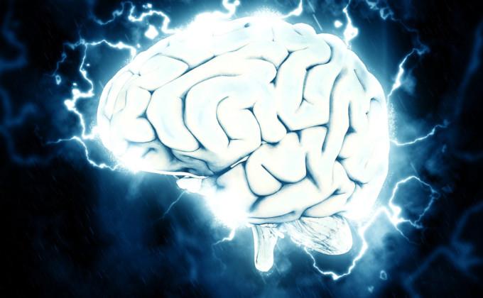 cerebro recortado