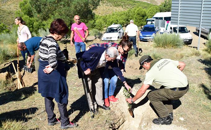 Plantación en la Sierra de Baza organizada por Macrosad_ (1)