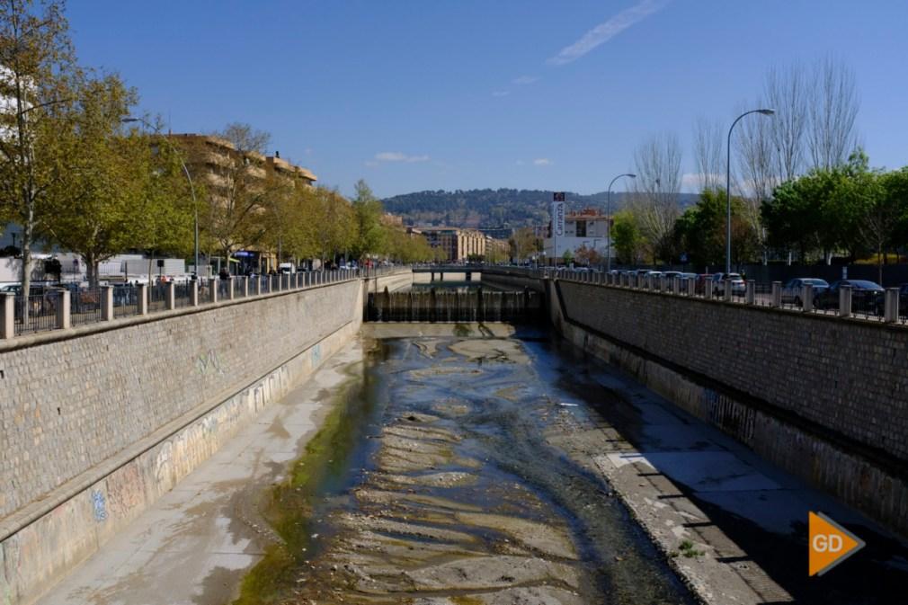 rio Genil en Granada Foto Antonio L Juarez-4264