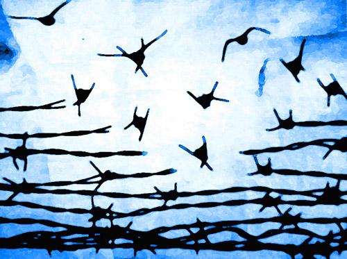 emancipation2
