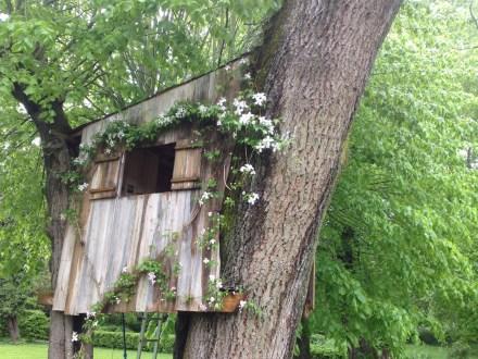 Cabane en bois dans un arbre décorée d'une clématite Montana
