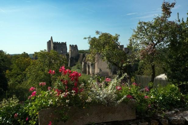 Château et fleurissement-K17_4066