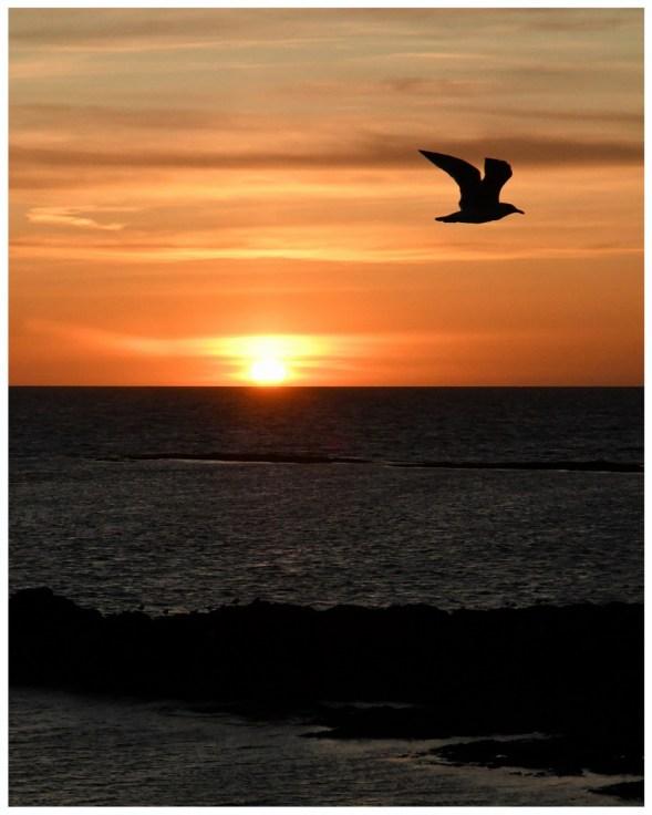 Marie-Dominique DSC_2273 coucher soleil p 40 50