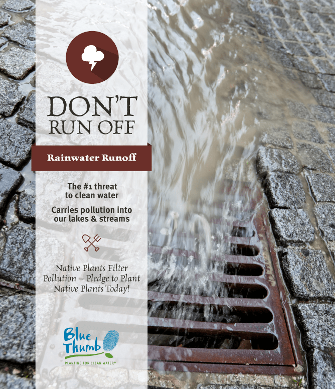 rainwater runoff number one threat to clean water carries pollution into waterways