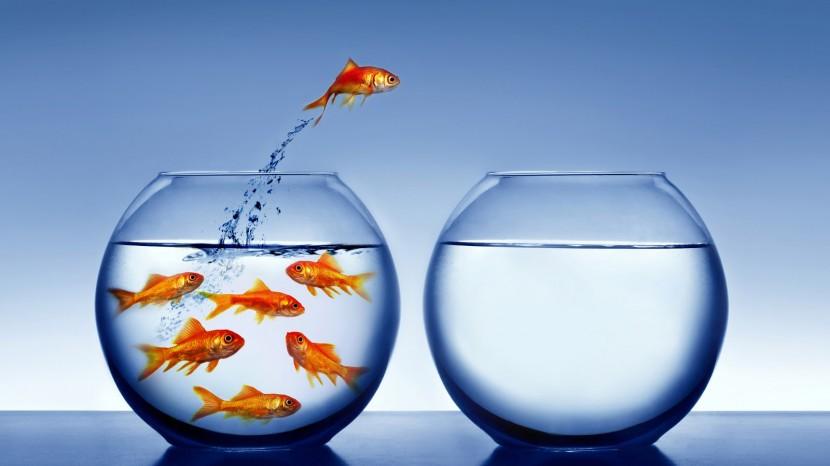 8 claves para transformar la incertidumbre en tu zona de confort