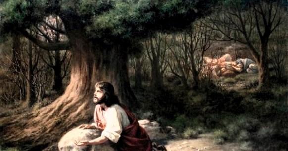 """Ha escuchado usted esta expresión: """"me encuentro en el Getsemaní"""", si, ha oído tal reflexión, significa que quien la expresa, está identificándose con Cristo, junto con (el contexto desolado), refiriéndose al lugar donde Jesús padeció las emociones más dolorosas por las que también atraviesa el ser humano."""