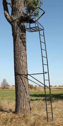 big game titan xt ladder stand