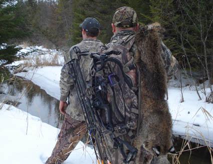 bobcat hunting