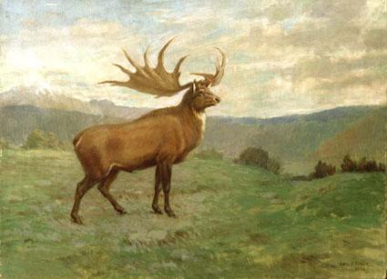 irish elk painting
