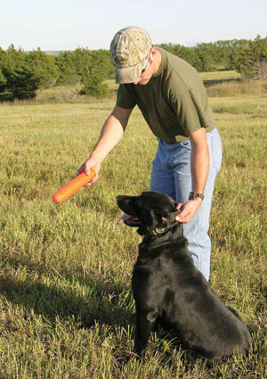 retriever training