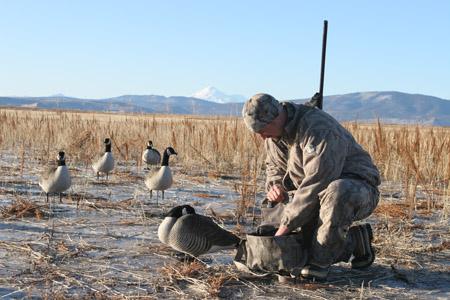 waterfowl hunting north dakota