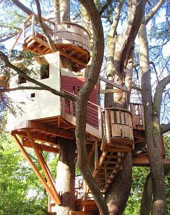 Let´s Get Off The Ground Tree House Designs For Kids