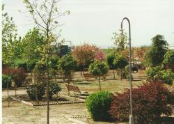 Parque Ventura Villarrubia