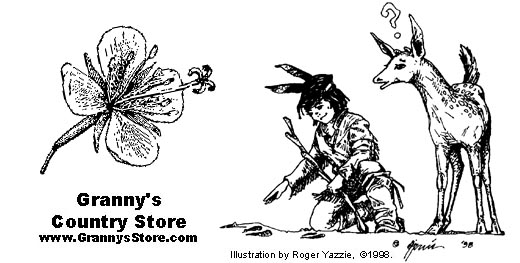 Granny's Country Store: Nature Awareness, Wildlife and