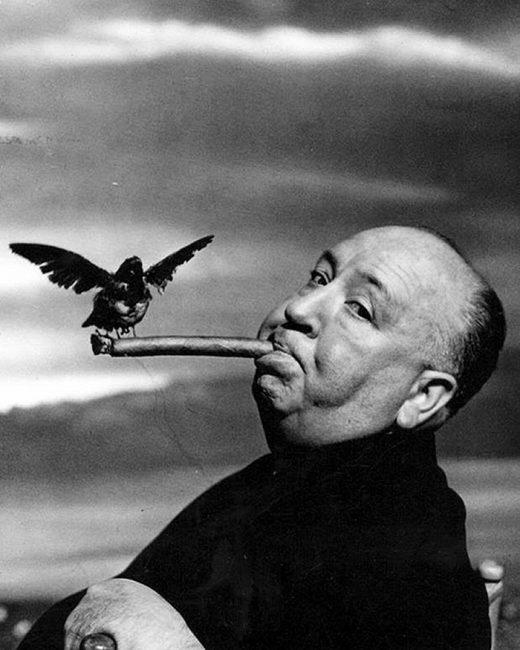 philippe-halsman-alfred-hitchcock-avec-corbeau-et-cigare-film-les-oiseaux