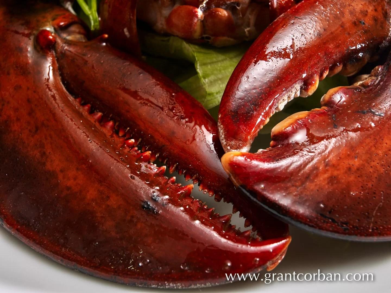 Fresh Lobster in Episode restaurant publika