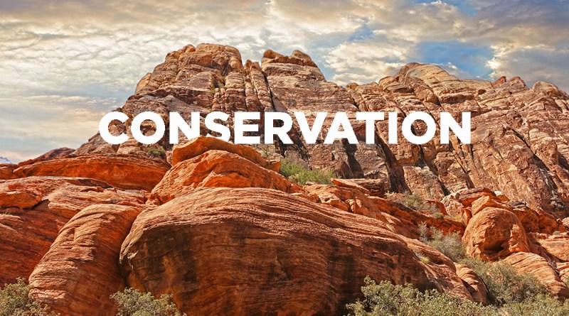 Conservation Southwest