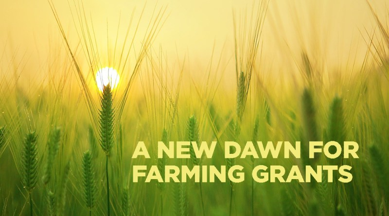 Honoring National Farmer's Day with Six Agriculture Grants