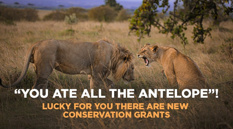 Six Wildlife Grants to Fund Conservation Efforts