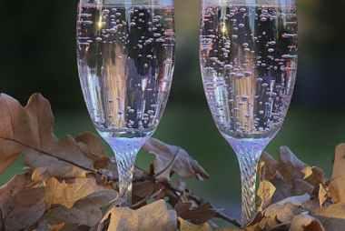 fall wines