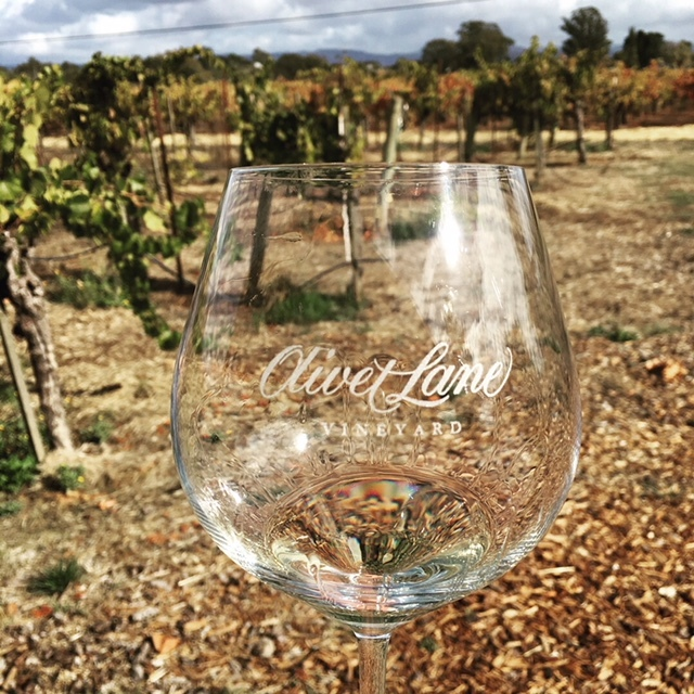 Pellegrini Wine Company: A Russian River Valley Winery for the Ages
