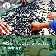 WSET Level 3 Courses