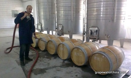 david tyney jin sha winery ningxia china