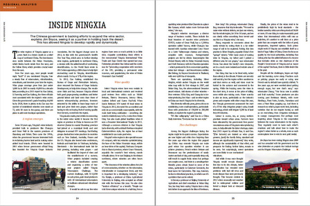 ningxia regional analysis by jim boyce for wine business international.jpg