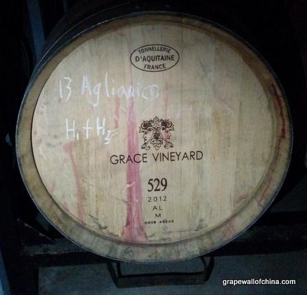 aglianico in barrel grace vineyard visit shanxi china
