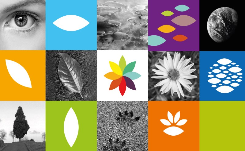 web-observatoire-concept-logo