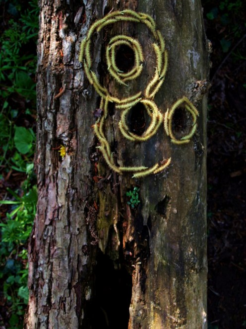 land_art_photograpy_ludovic_fesson_5